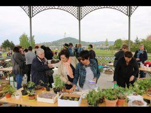 2017-04-22-Noidans-Troc-Plantes-4362