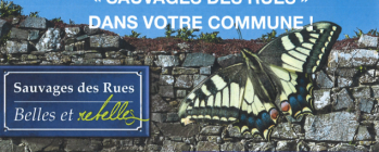 "Balade ""Sauvages des rues, belles et rebelles"""